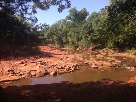 martin-nature-reserve-creek